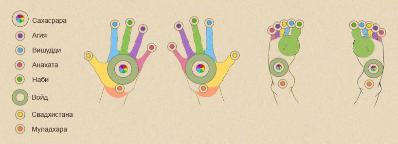 Проекции чакр на руках и на ногах